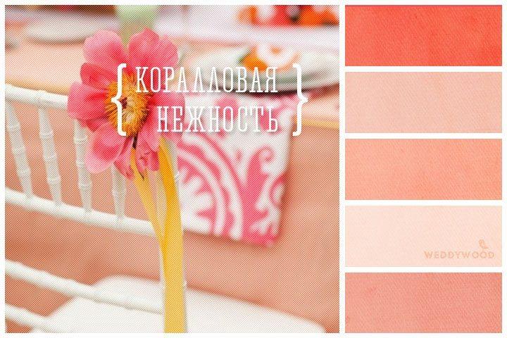 Вдохновение цветом: коралловый