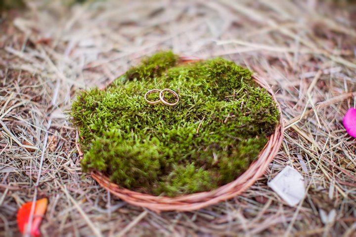 Осеннее очарование: Свадьба Евгения и Анастасии