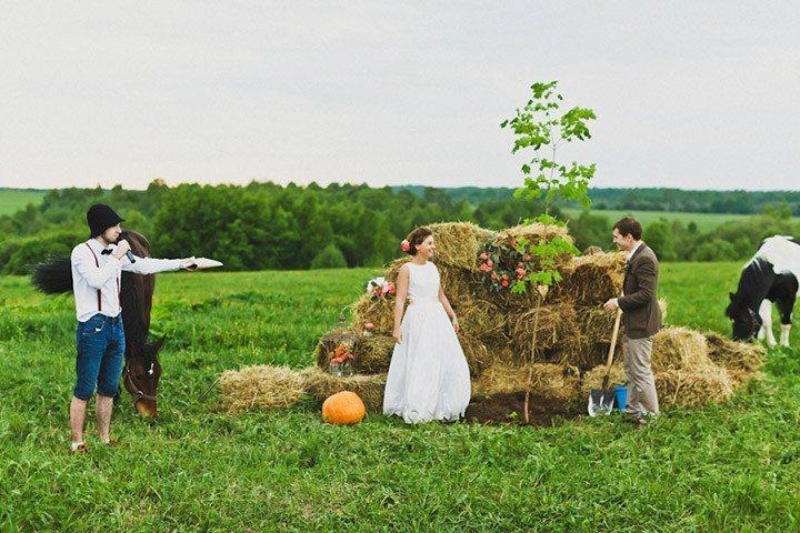Свадебные традиции: посадить дерево