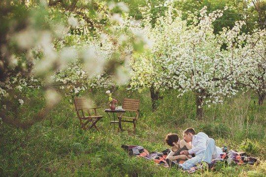 яблочный сад смотреть сериал