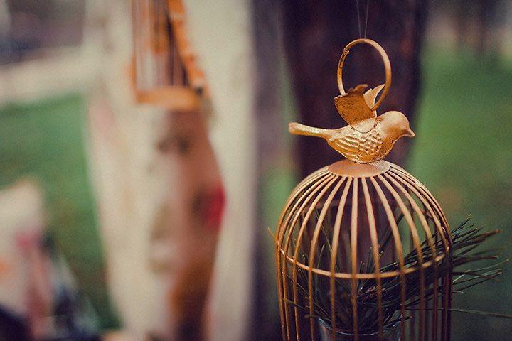 Птица счастья: свадьба Артема и Лены