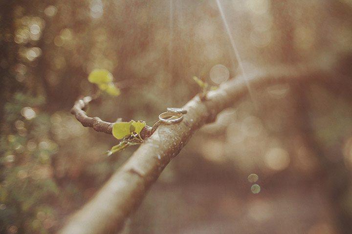 история знакомства жениха и невесты стих