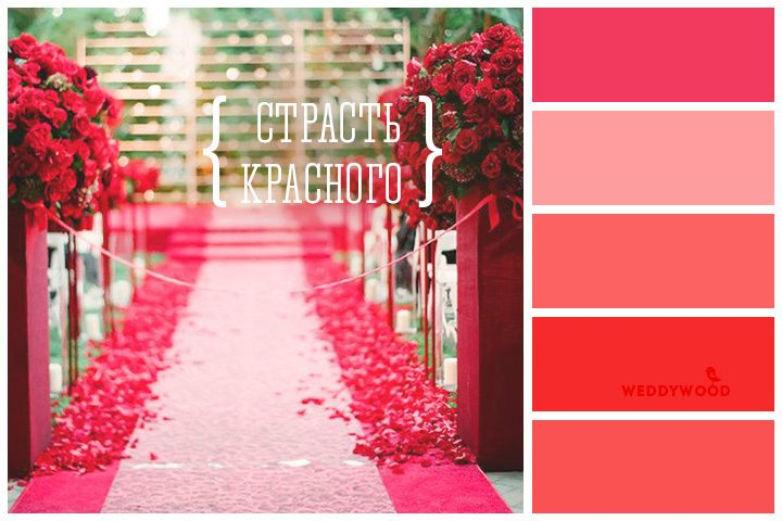 Вдохновение-Цветом-NEW