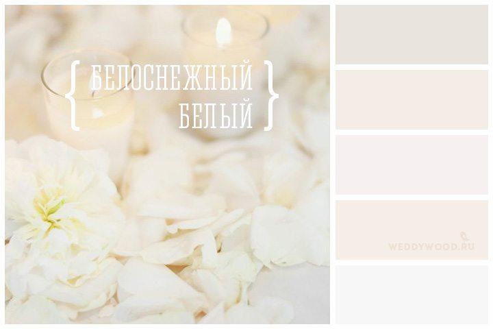 цвет айвори фото палитра