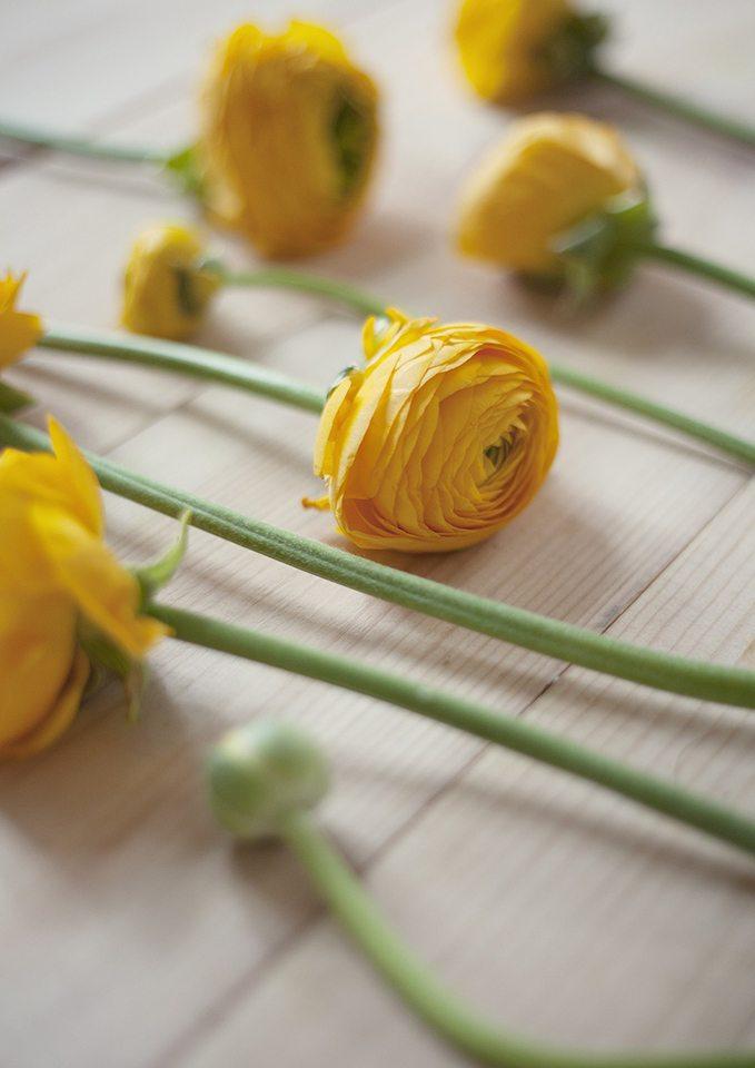 Цветочная кухня: желтое настроение