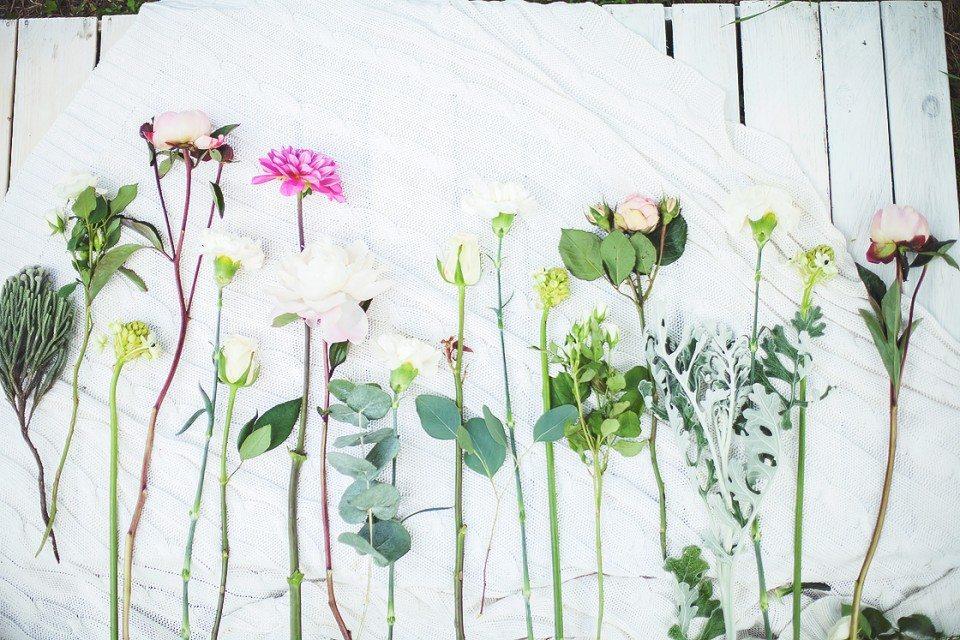 Цветочная кухня: бело-розовое облако цветов