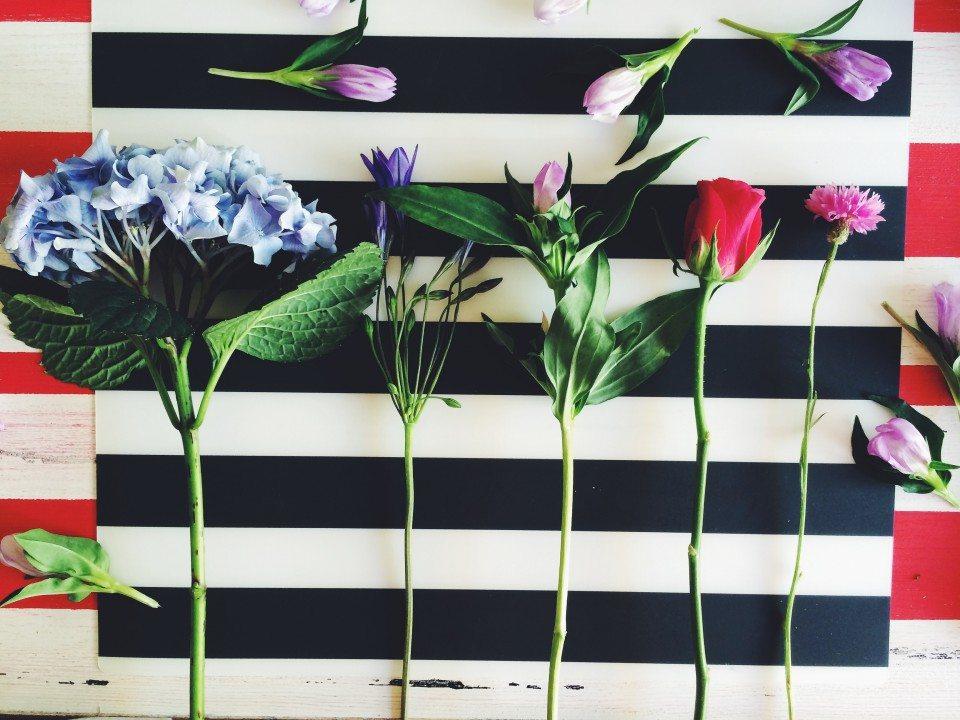 Цветочная кухня: голубое облако гортензии
