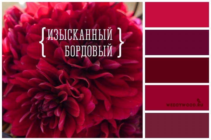 93e070d2c0d0 Этот глубокий цвет выгодно подчеркнет изысканность, элегантность и  стремление к высокому, поэтому если вы стремитесь придать вашему празднику  королевских и ...