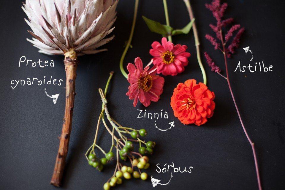 Цветочная кухня: загадочная протея