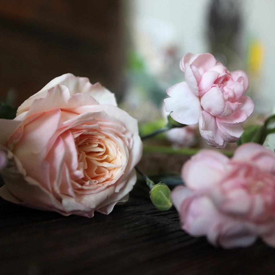 Два цветка девушка 71