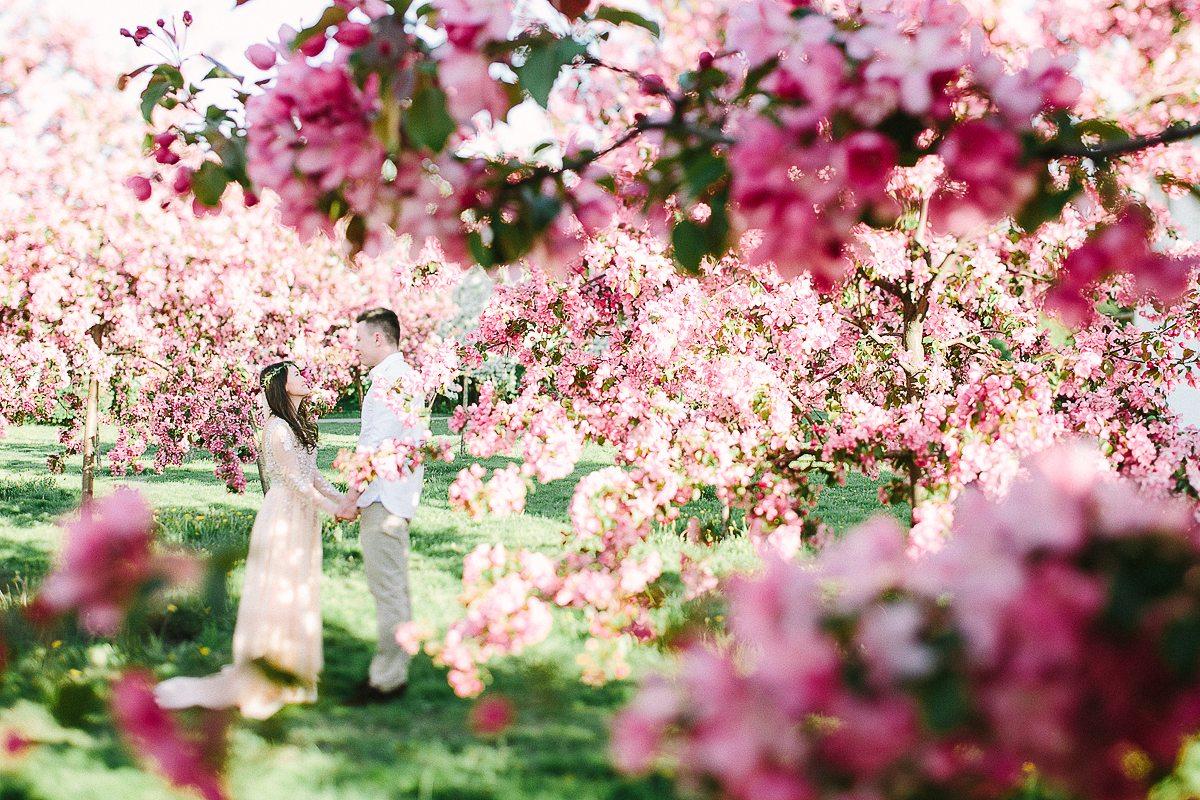 Цветущие сады открытки