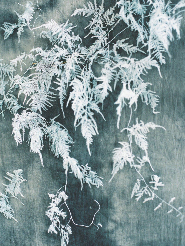 The Cold Heart: стилизованная фотосессия