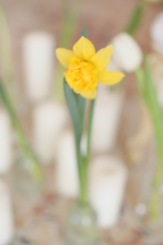 Дыхание весны: стилизованная фотосессия