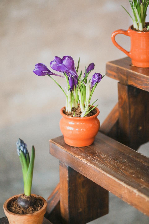 Приближение весны: стилизованная фотосессия