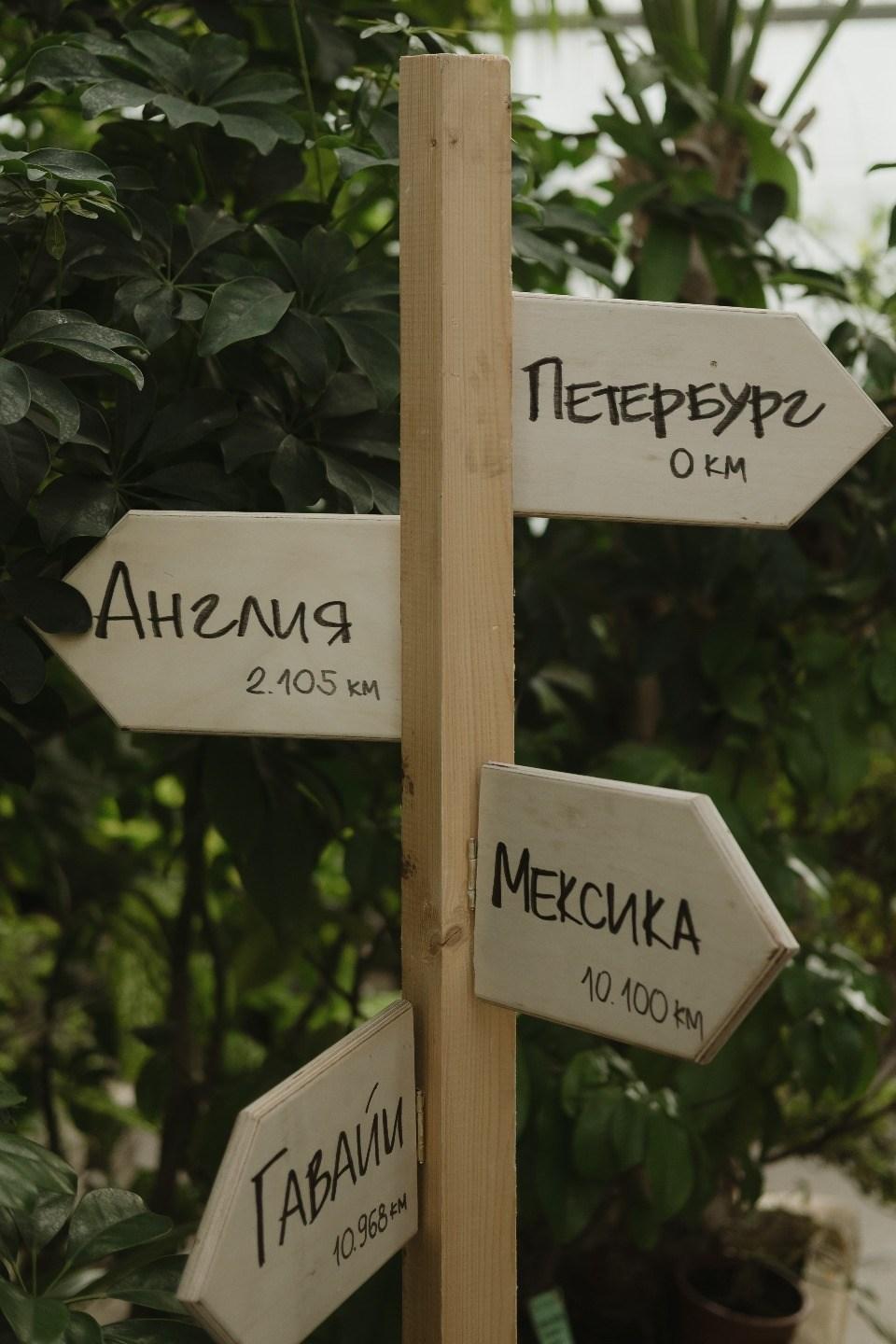 Гавайи, Мексика и Англия в Питере: свадьба в стиле «путешествия»