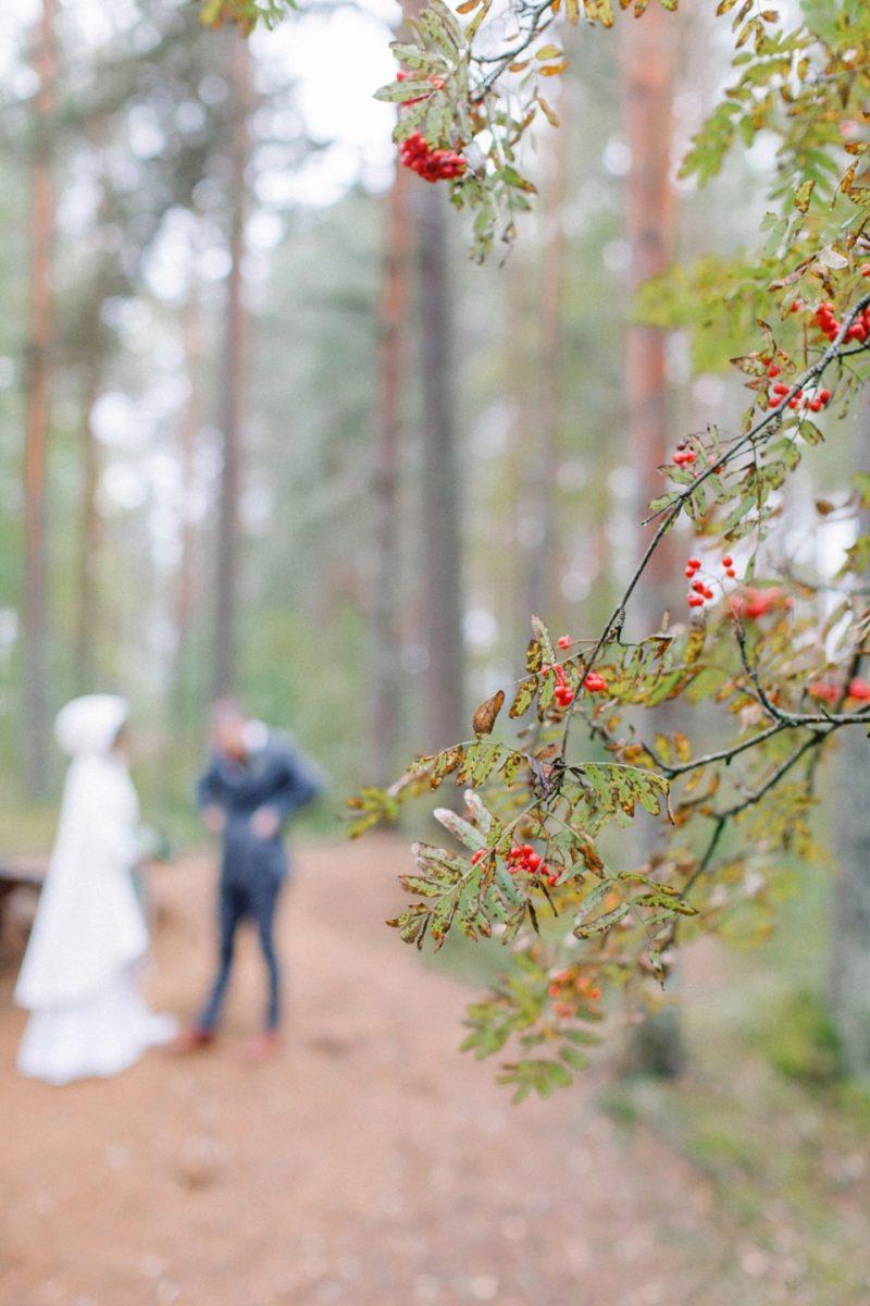 Свадьба в карелии на природе фото