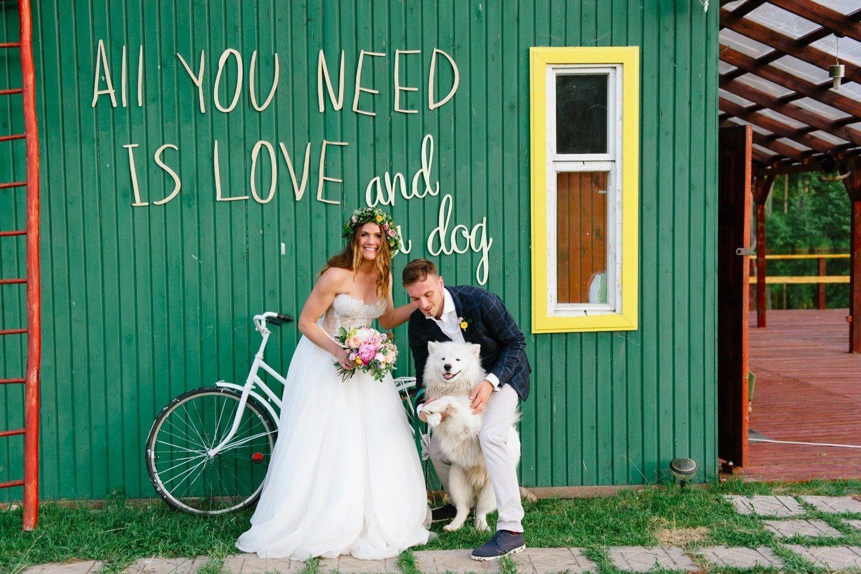 Питомец на свадьбе? Вот что нужно сделать!