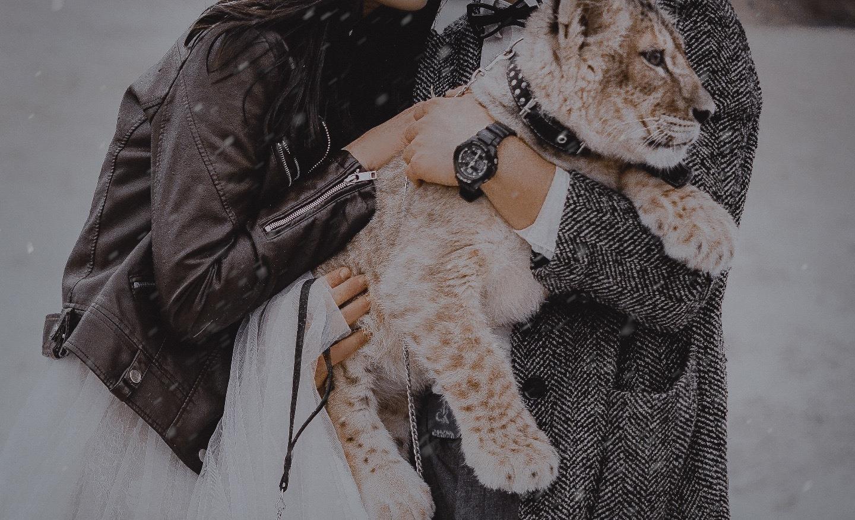 Boho with lion: стилизованная фотосессия