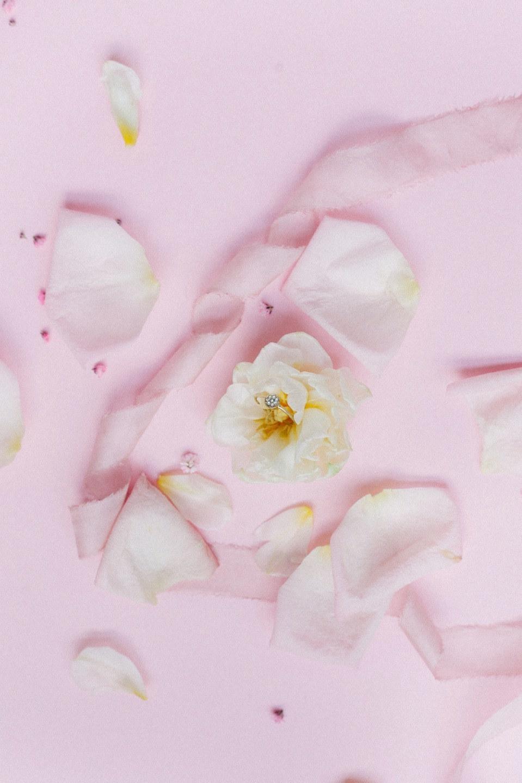 Pink Inspiration: стилизованная фотосессия