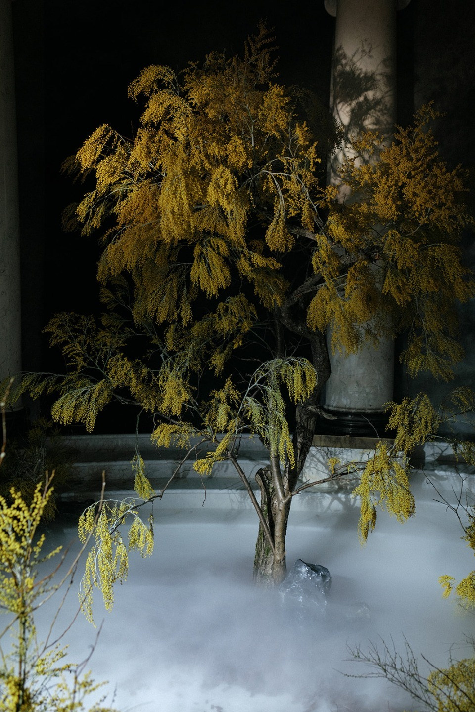Awake: стилизованная фотосессия с японскими мотивами