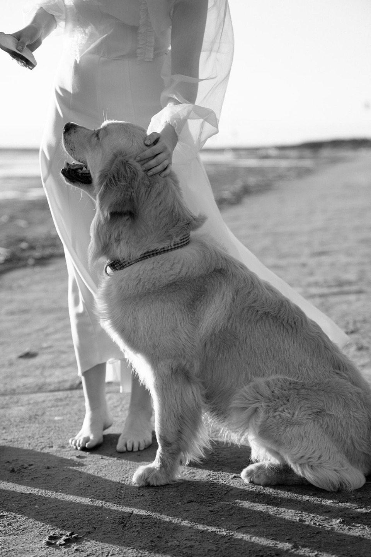 Минимализм: свадьба в Санкт-Петербурге на берегу Финского залива