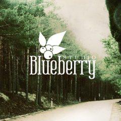 Blueberry studio