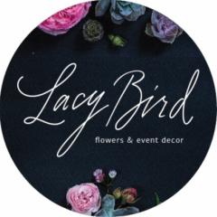 Lacy Bird